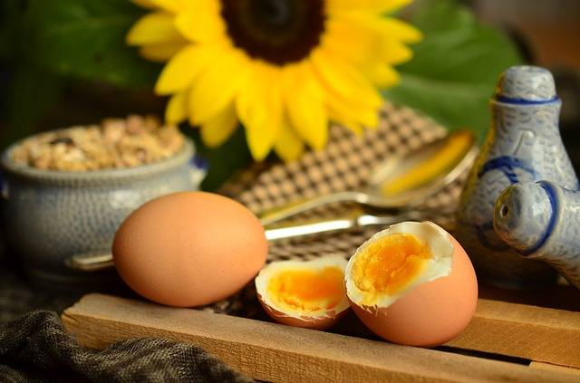Egg Yolk Boiled Breakfast · Free photo on Pixabay (220)
