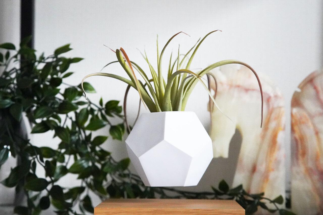 植物を宙に浮かべて育てることができるプランター「LYFE」