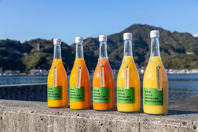 ソムリエが選んだ究極のみかんジュース。奥深き柑橘の世界へようこそ!