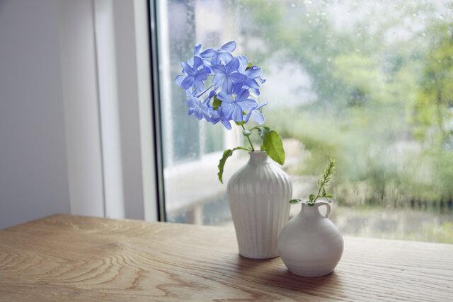 一輪挿しに合う花の選び方は?暮らしに彩りを添えるアイデアを紹介