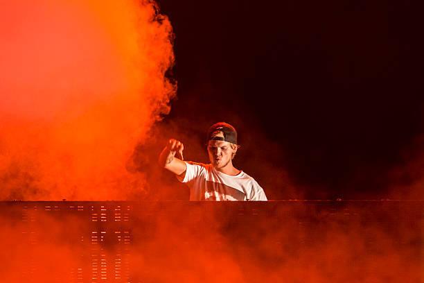 天才DJ!aviciiのおすすめEDM6選