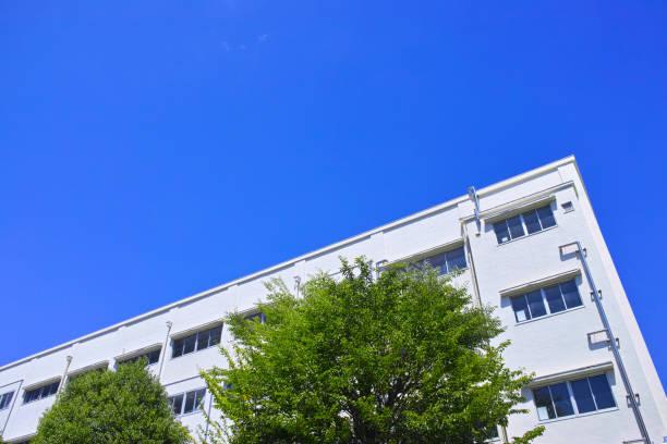 新鮮な緑と校舎