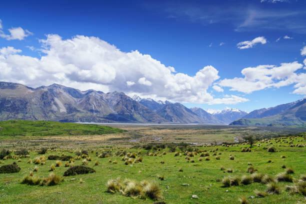新しいニュージーランド ハカテレ保全自然保護区公園