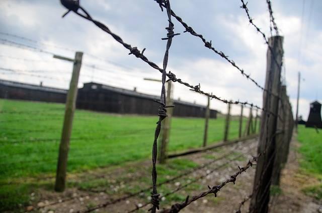 Fence Holocaust Barbwire · Free photo on Pixabay (999)