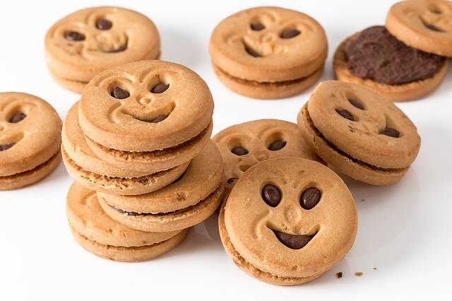 Cookie Biscuit Round · Free photo on Pixabay (2025)