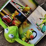 赤ちゃんも大喜び!お勧めの赤ちゃん向け絵本と読ませ方