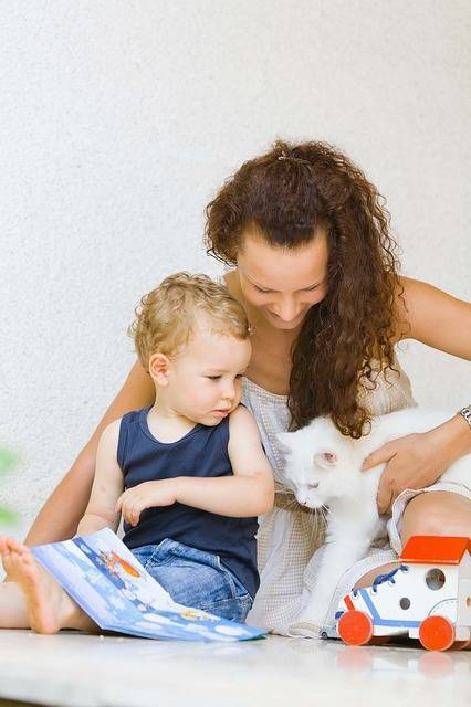 外で遊べない時の子供の遊び場って?無料で使える室内施設をご紹介♪