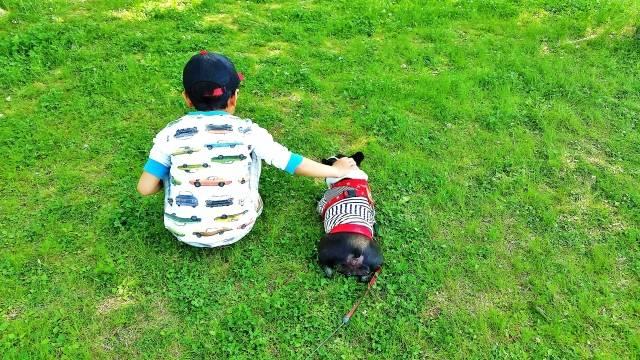 子どもと犬を一緒に育てる♡一緒に生活するメリットと知っておきたいお世話ポイント徹底解説