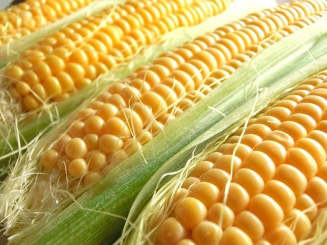 北海道産のトウモロコシが食べたい♡オススメの品種&お菓子と食べ方を大公開♪