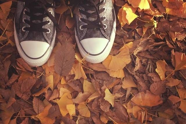 「秋冬」の画像検索結果