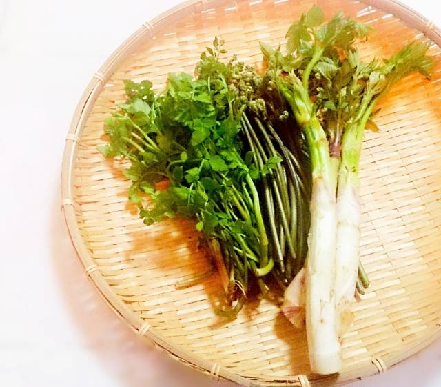 山菜で春を楽しもう!おすすめの種類5選♡栄養&美味しく食べられるレシピ総まとめ!