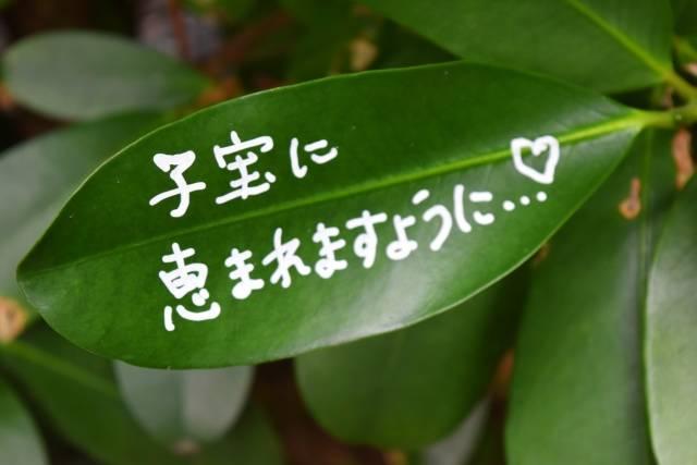 子宝祈願ならここ!《関西版》有名神社ベスト3☆ご祈祷のマナーと初穂料についても要チェック!