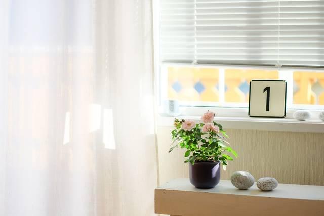 カーテンとブラインドどっちがいいの?お部屋に合う選び方のポイントと組み合わせ方を徹底解説♡