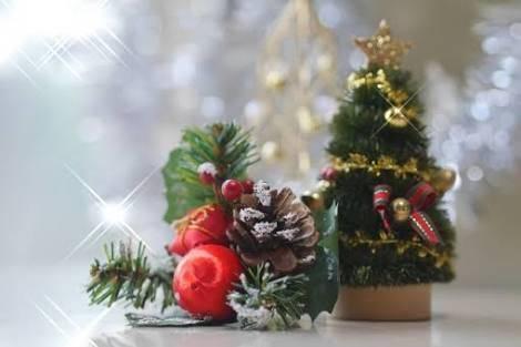 おしゃれに見せる♡クリスマスツリーを上手に飾るコツとは?オーナメントの種類&意味もご紹介!