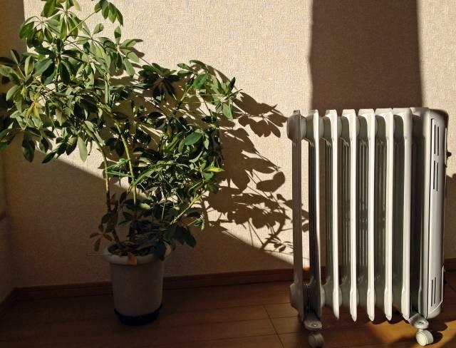 オイルヒーターの気になる電気代!やっぱり高いの?安くする方法は?おすすめの機種もご紹介♡