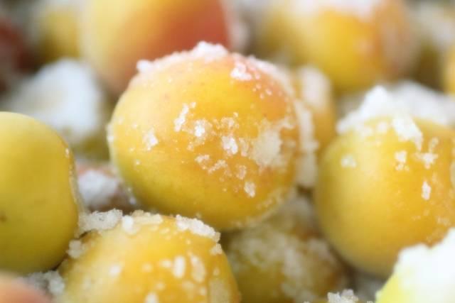 簡単にできる梅干しの作り方!基本のレシピから道具いらずの方法までご紹介