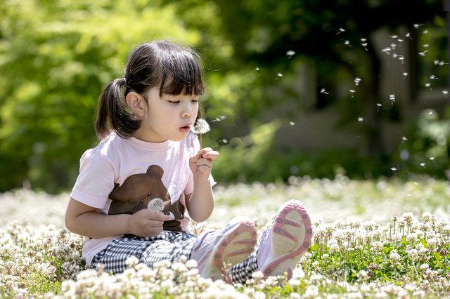 春は子供と草花遊びを楽しもう!簡単に笛作りや草かんむりができる動画やアイデア8選をご紹介!