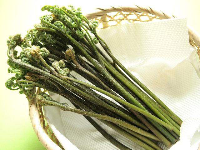 わらびのおすすめレシピ10選!あく抜きや保存法も!美肌効果もある春の山菜を存分に味わおう