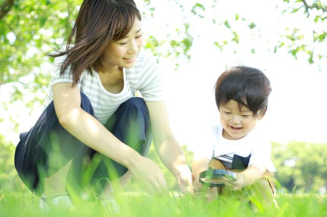 子どもの知育におすすめの図鑑8選!何歳から読んだらいいの?親子で楽しむ方法もご紹介!
