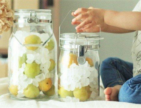 子どもと楽しむ梅シロップの基本の作り方~梅の旬の恵みを1年中味わう暮らしのレシピ~