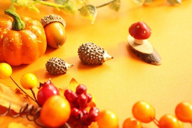 今年は芸術の秋を楽しもう!おうちで楽しめる絵画・工作・バレエ・音楽のおすすめ動画をご紹介