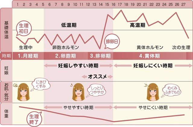 基礎 体温 グラフ 見本