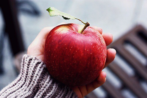 apple, autumn by InkedPoetess | WHI (17033)
