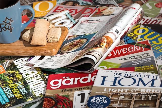 Free photo: Magazines, Reading, Leisure - Free Image on Pixabay - 716801 (21704)