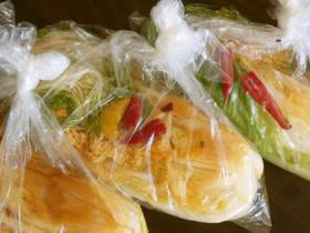 ✿白菜の漬物✿ポリ袋で本格漬け by fuchandesu 【クックパッド】 簡単おいしいみんなのレシピが274万品 (87146)