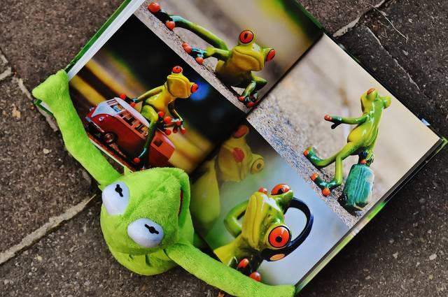 無料の写真: カーミット, 本, 絵本, 見ます, カエル, 座る, フィギュア - Pixabayの無料画像 - 1673471 (98913)