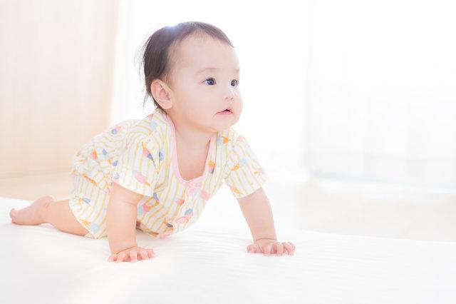 すくすく成長する赤ちゃん(ハイハイの様子)|無料の写真素材はフリー素材のぱくたそ (175732)