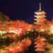 ≪2019年秋≫京都の紅葉ライトアップ人気スポット10選!フォトジェニックな古都の夜  - ikumama
