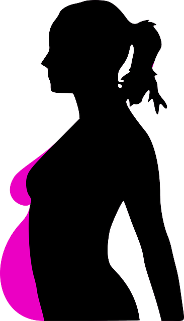 Free vector graphic: Pregnancy, Woman, Profile - Free Image on Pixabay - 31113 (1815)