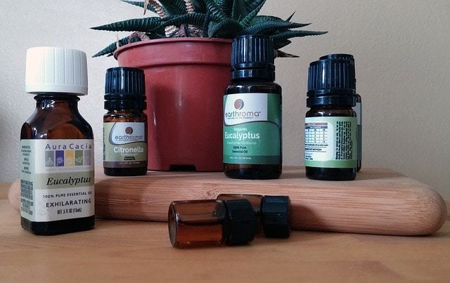 Free photo: Essential Oil, Essential, Oils - Free Image on Pixabay - 1544439 (1850)