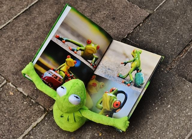 Free photo: Kermit, Book, Picture Book - Free Image on Pixabay - 1673468 (5040)