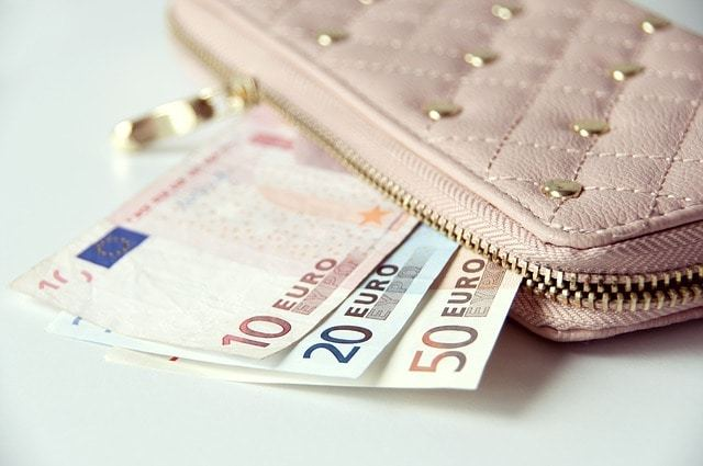 Free photo: Wallet, Money, Banknotes, Euro - Free Image on Pixabay - 867568 (6491)