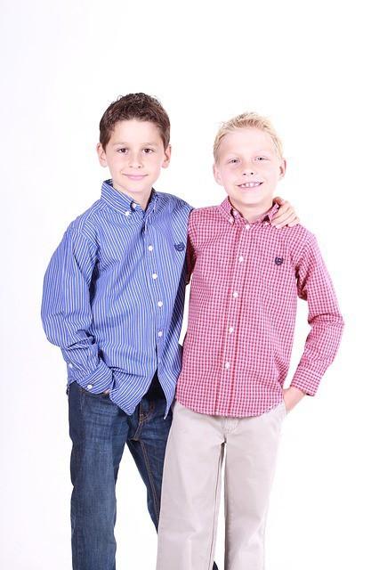 Free photo: Boys, Brothers, Family, Child, Cute - Free Image on Pixabay - 554375 (8750)