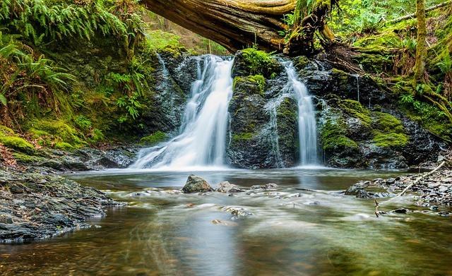 Free photo: Water, Waterfall, River, Stream - Free Image on Pixabay - 1209782 (10144)