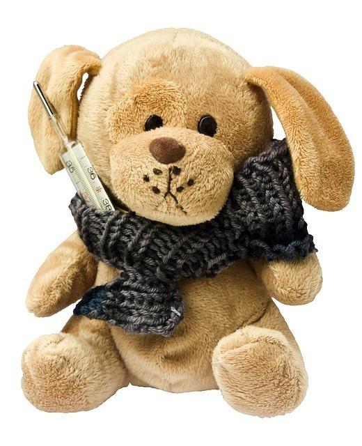 Free photo: Teddy, Dog, Stuffed Animal, Ill - Free Image on Pixabay - 242878 (10501)