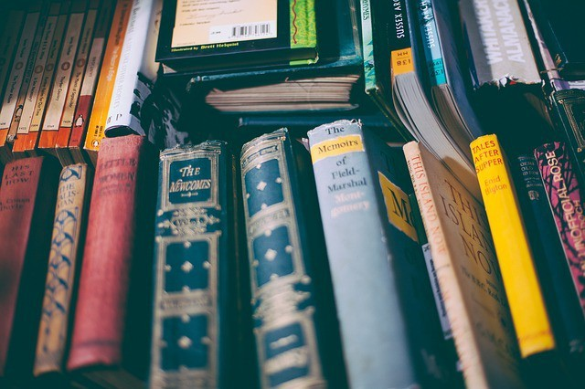 Free photo: Book, Book Stack, Bookcase, Books - Free Image on Pixabay - 1867171 (12524)