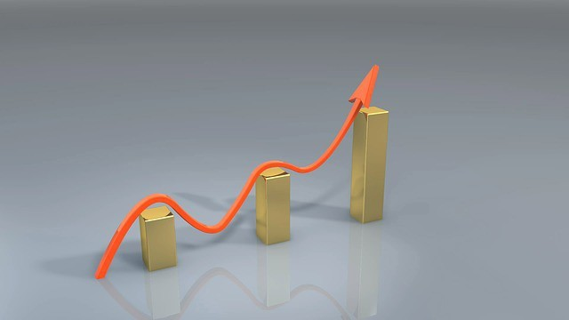 Free illustration: Business, Success, Winning, Chart - Free Image on Pixabay - 163464 (14248)