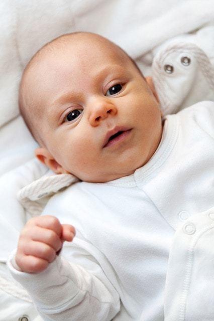 Free photo: Adorable, Baby, Beautiful, Boy - Free Image on Pixabay - 71031 (14645)