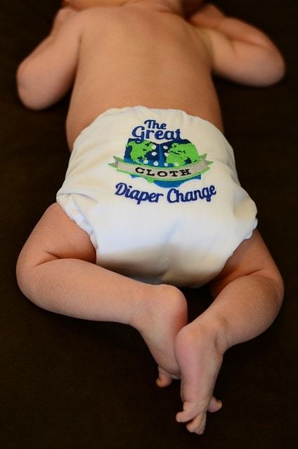 Free photo: Diaper, Cloth Diaper, Baby - Free Image on Pixabay - 501333 (15384)