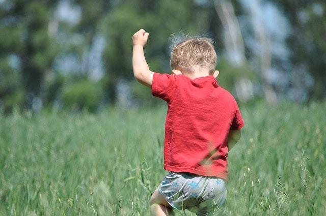 Free photo: Village, Nature, Boy, Kid, Summer - Free Image on Pixabay - 1424508 (16587)