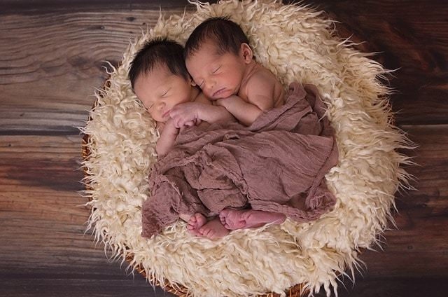Free photo: Twins, Boys, Babies, Sucklings - Free Image on Pixabay - 1628843 (16732)