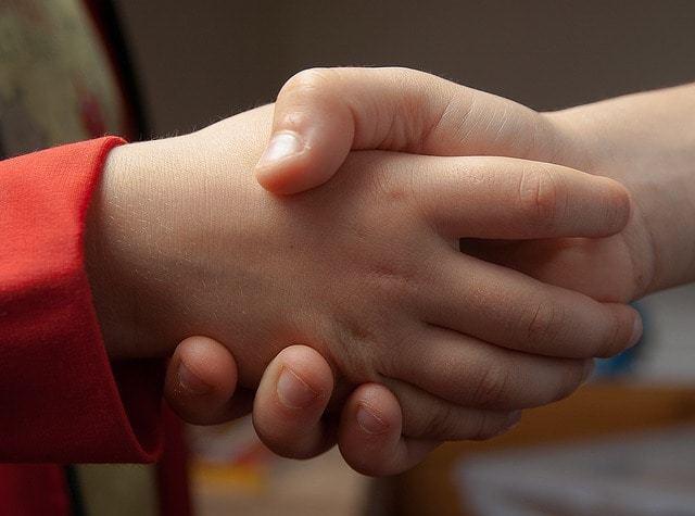 Free photo: Handshake, Hi, Friendship, Hands - Free Image on Pixabay - 1471563 (16867)