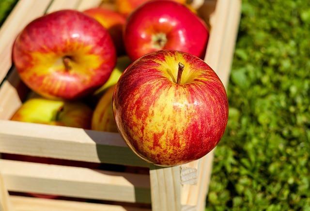 Free photo: Apple, Red, Fruit, Ripe, Harvest - Free Image on Pixabay - 1589874 (16943)