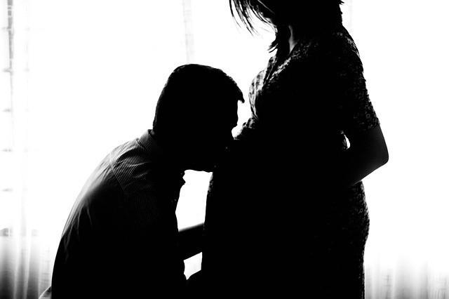Free photo: Pregnant, Maternity, Unborn, Person - Free Image on Pixabay - 971982 (18883)