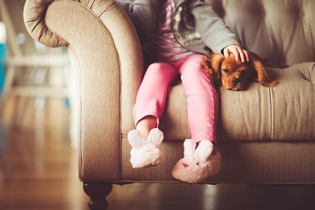 Free photo: Girl, Dog, Beauty, Young, Animal - Free Image on Pixabay - 1561943 (20273)