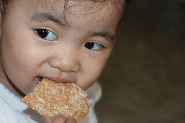 Free photo: Baby, Filipino, Asian, Little - Free Image on Pixabay - 1109331 (21546)